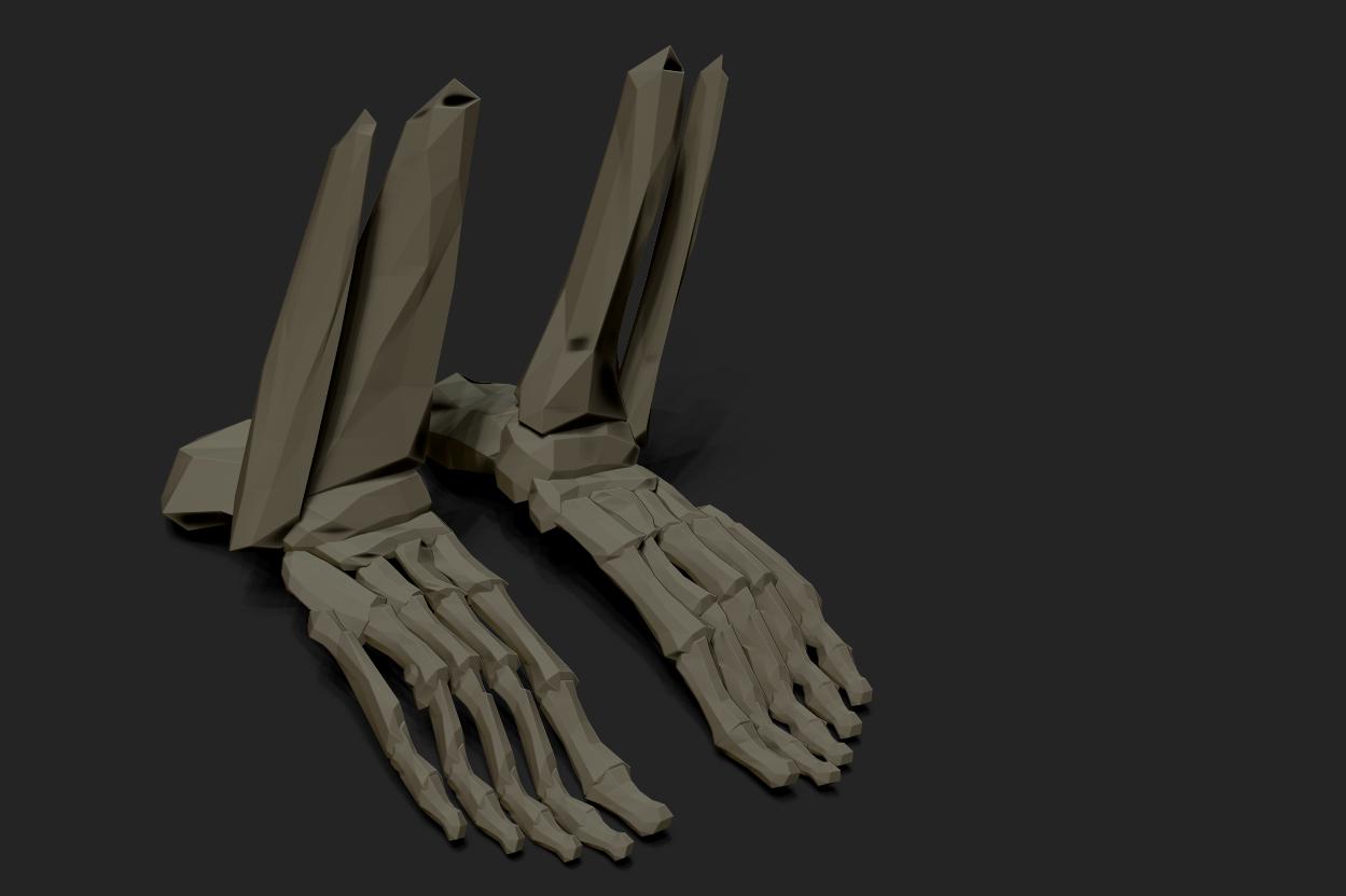 FeetBonesBPR_Study
