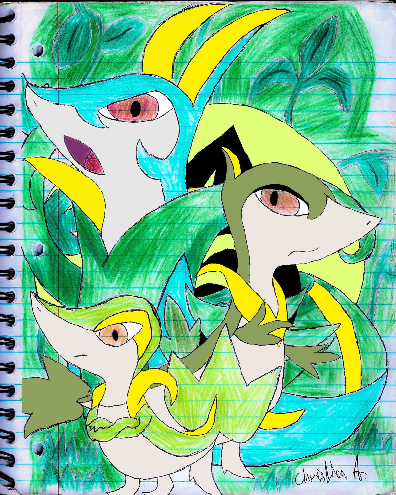 Evolutions of Snivy