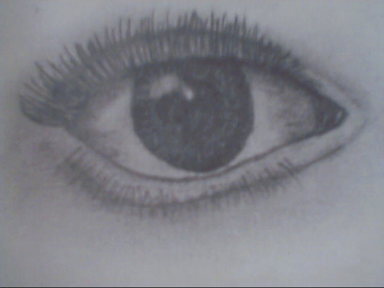 The Beauty Of The Eye