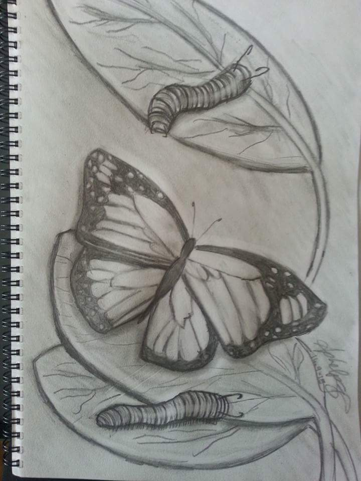 Butterfly Leaf by April Phelps