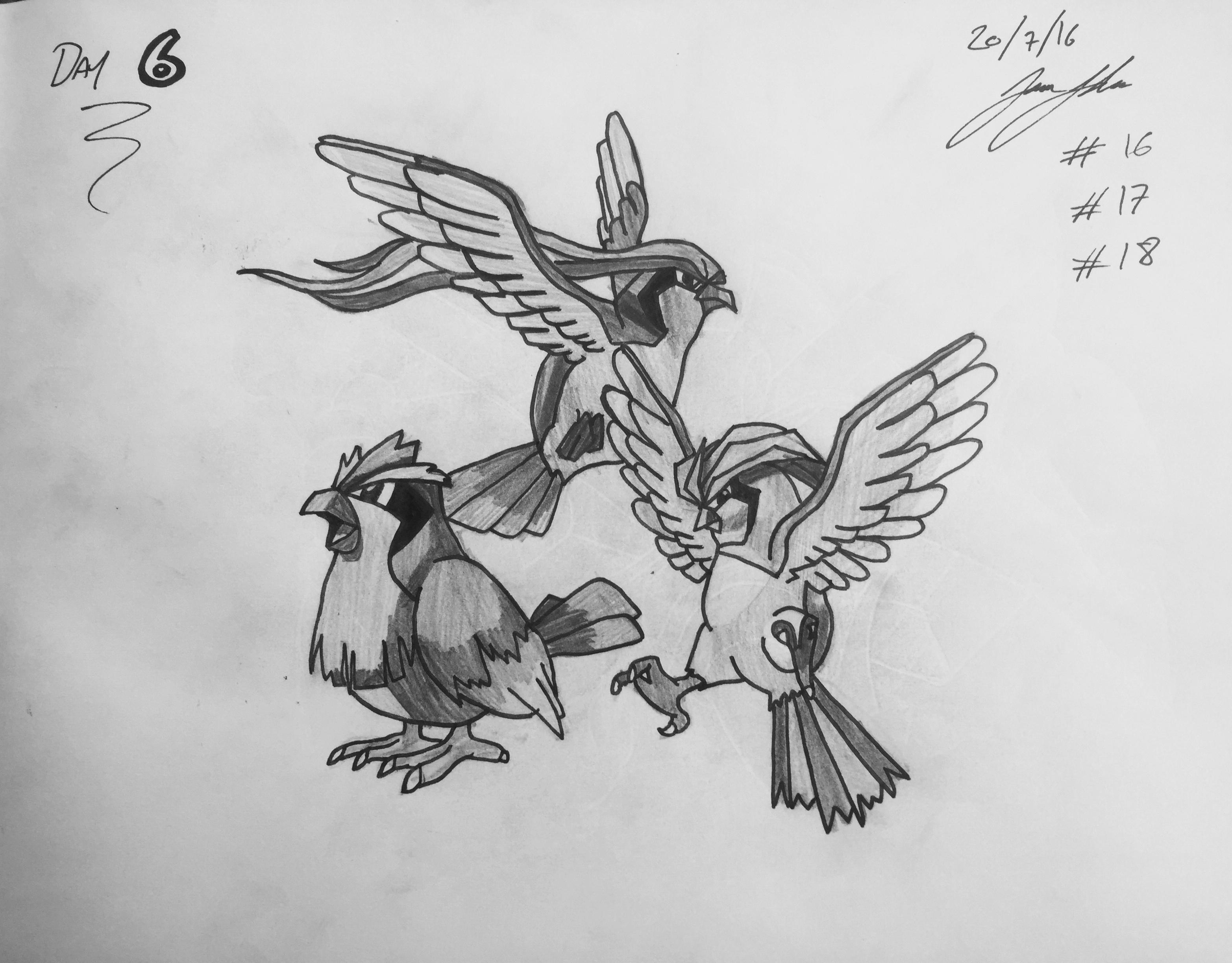 #16 Pidgey #17 Pidgeotto #18 Pidgeot