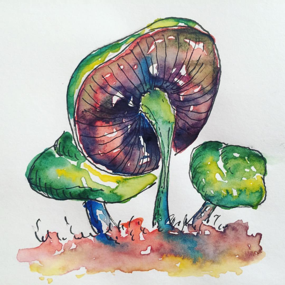 Magic Mushrooms No. 2