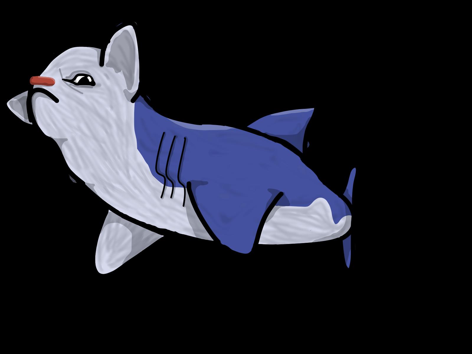 Goat Shark