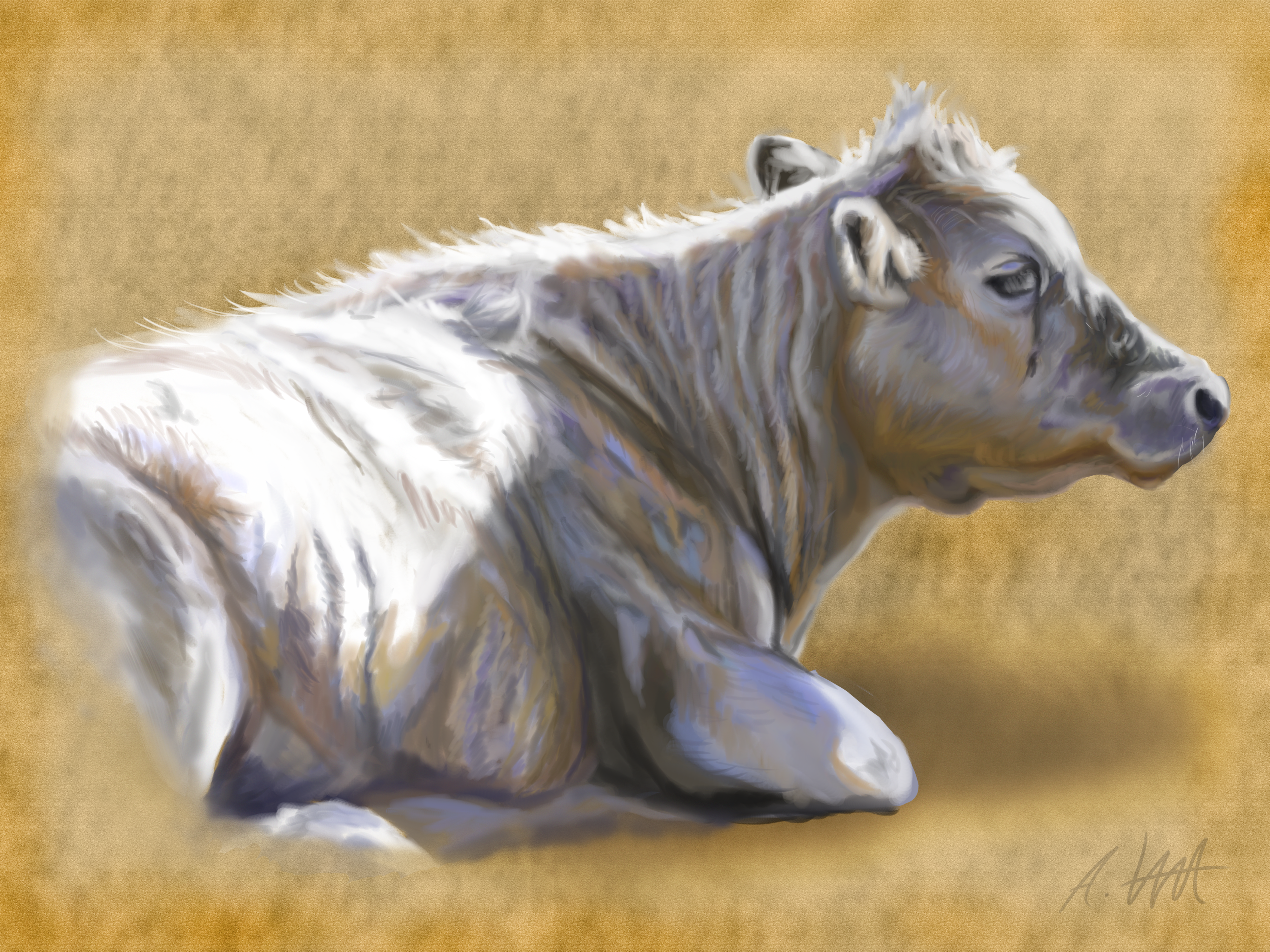 Another Cow