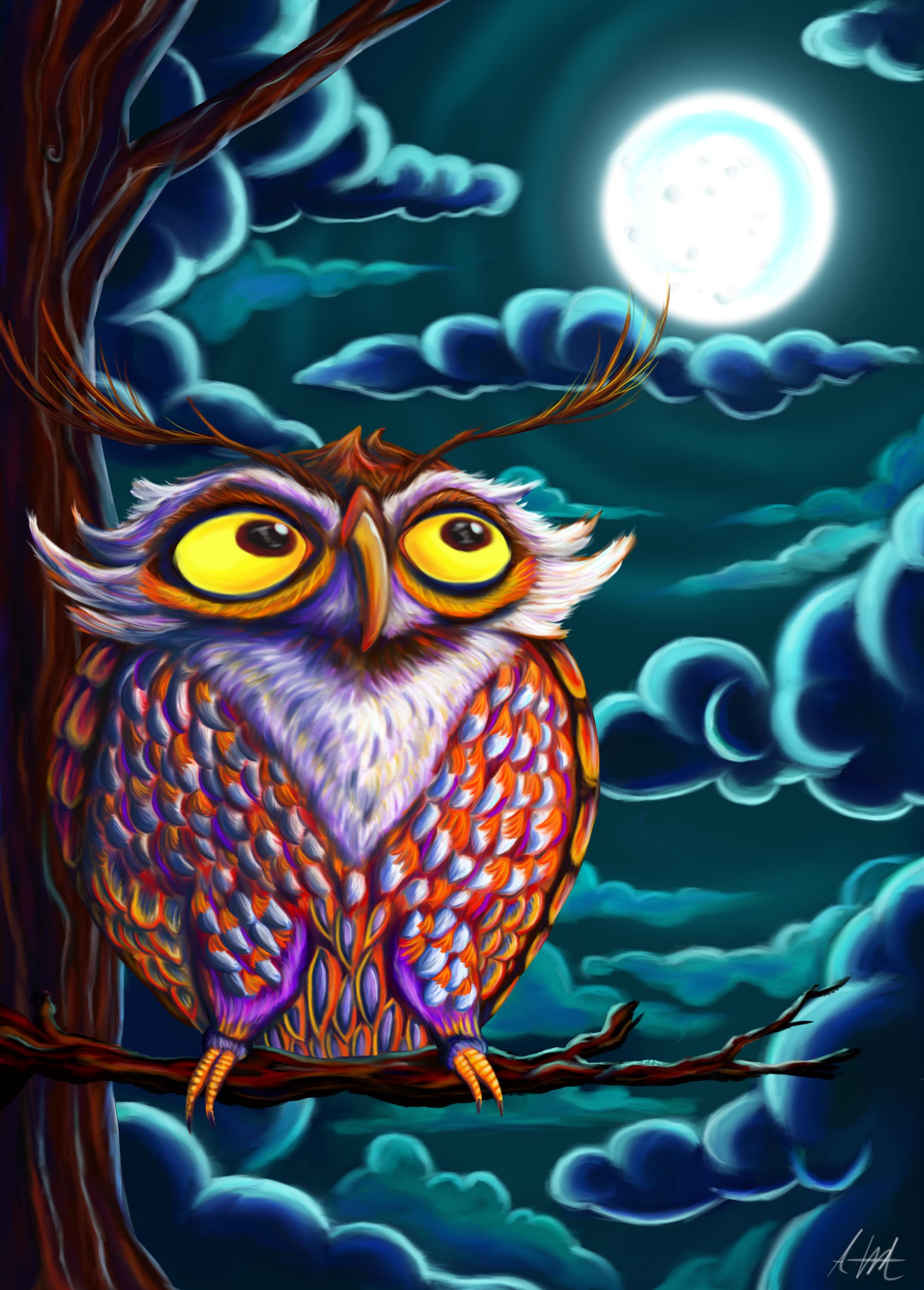 Night Time Owl
