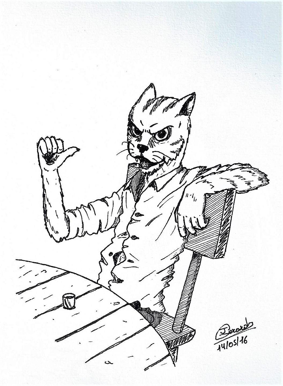 cat in a pub