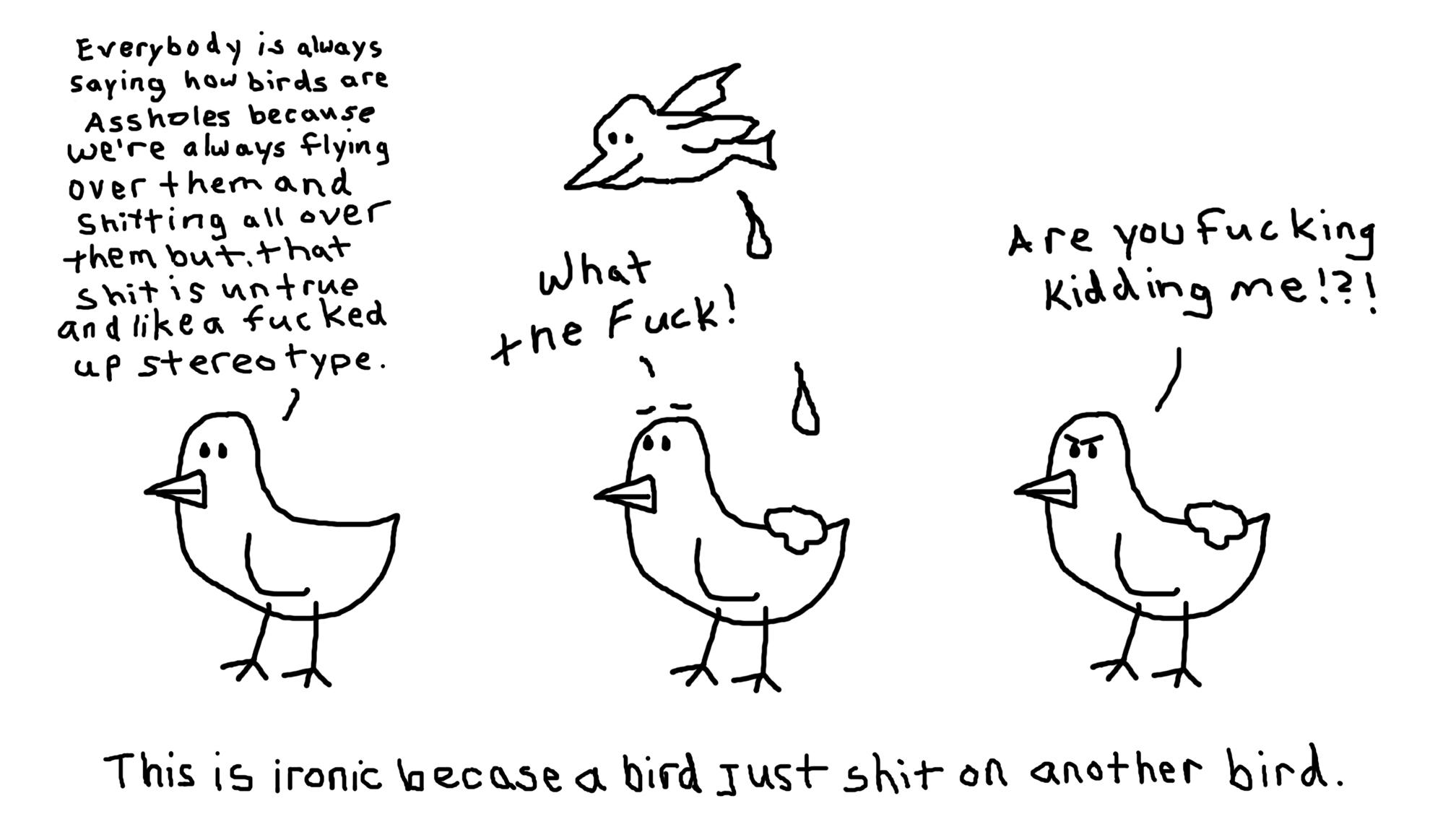 Fucked up Bird Stereotype