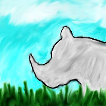 Rhinos Paradise