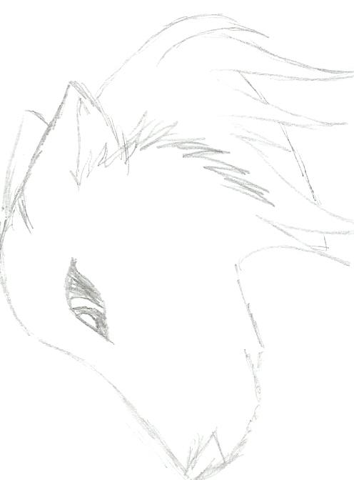 wolfie ^^