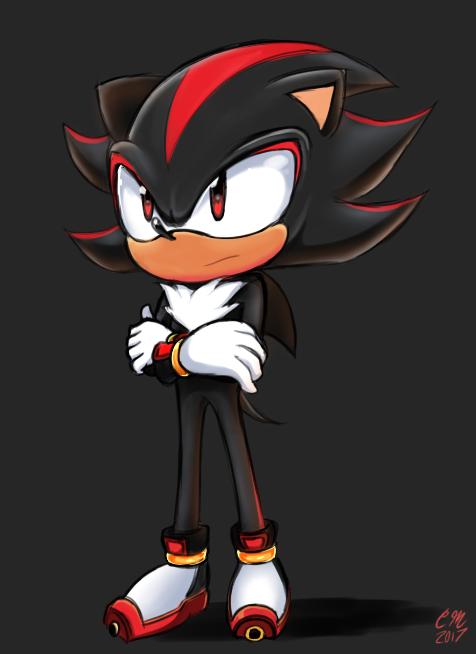 ShadowtheEdgehog