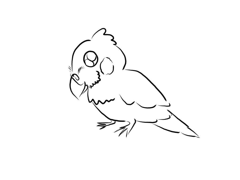 Cockatiel Cuteness Sketch