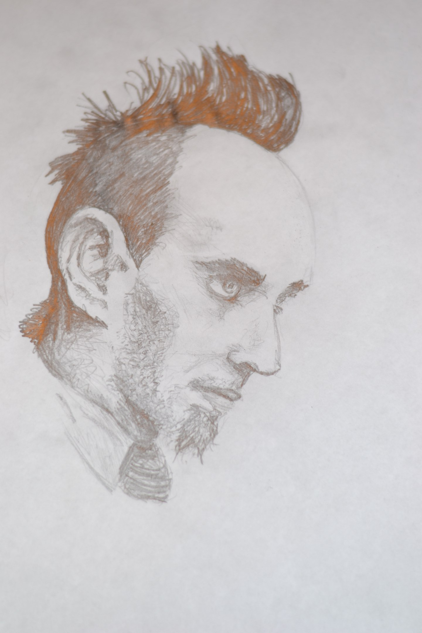 Saltillo's portrait
