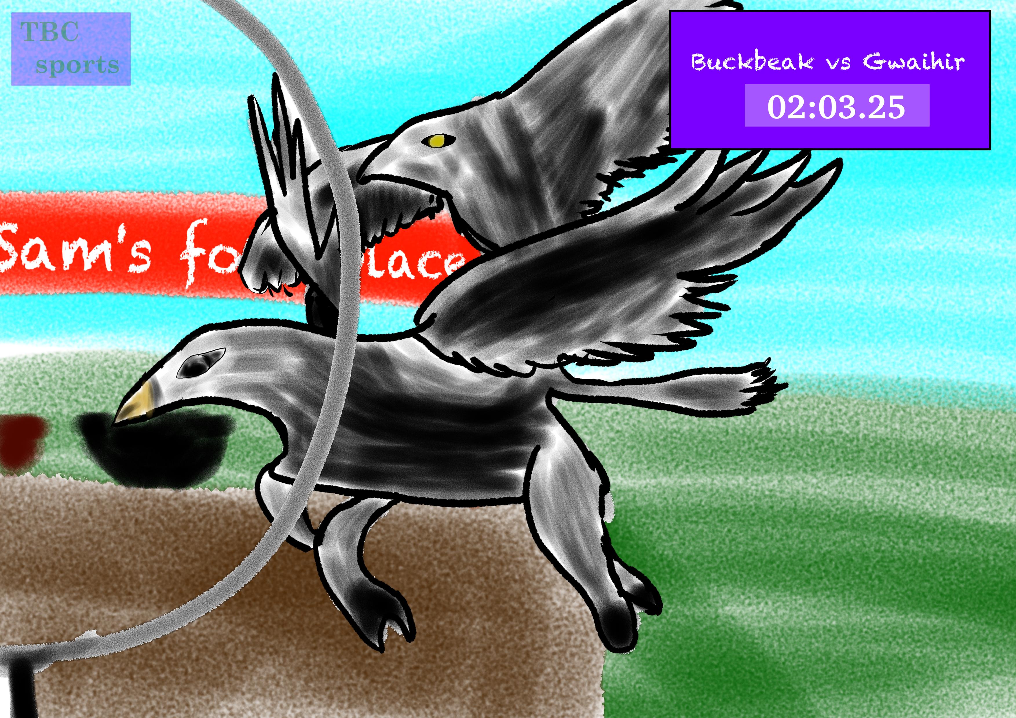 Buckbeak Versus Gwaihir race