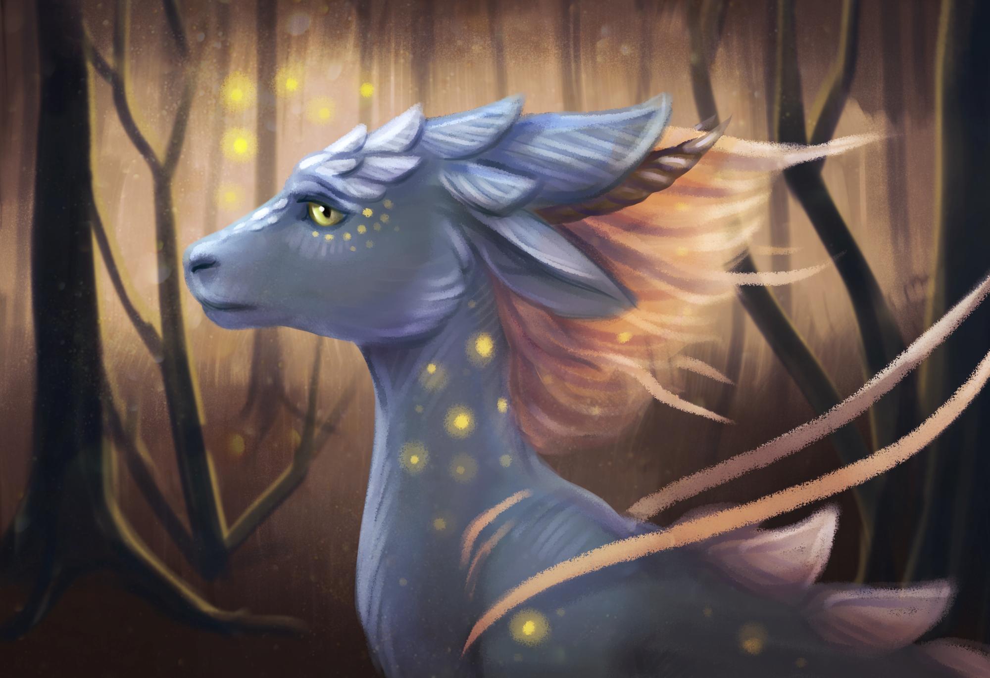 Magic forest [p]
