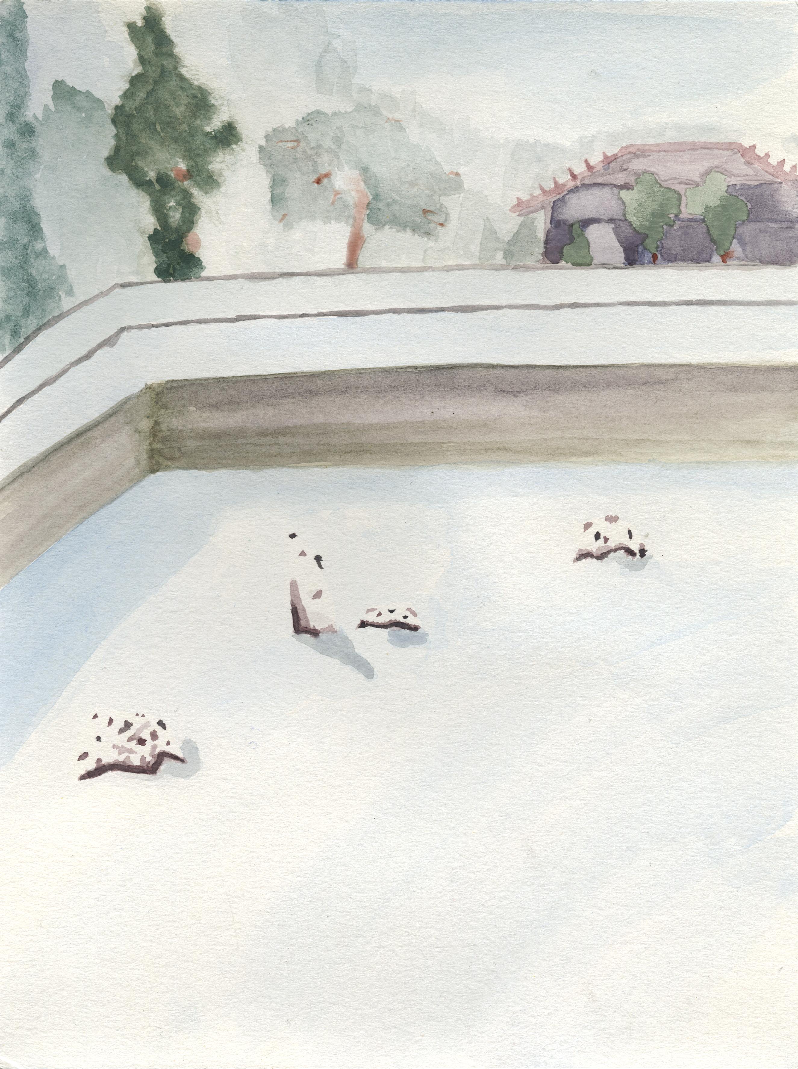 Ryōan-ji: Snow