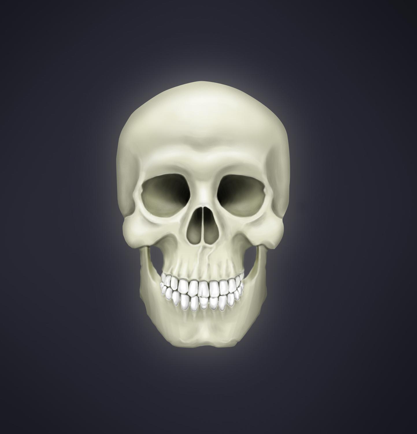 Humanoid Skull