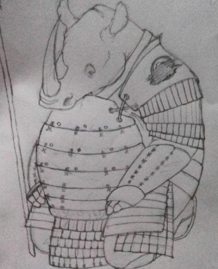 The Ronin Rhino