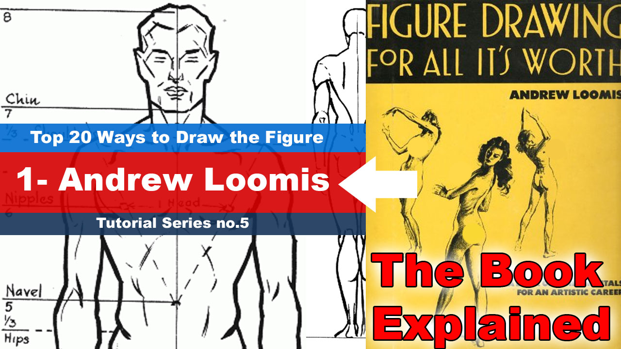 Andrew Loomis book Explained in a video