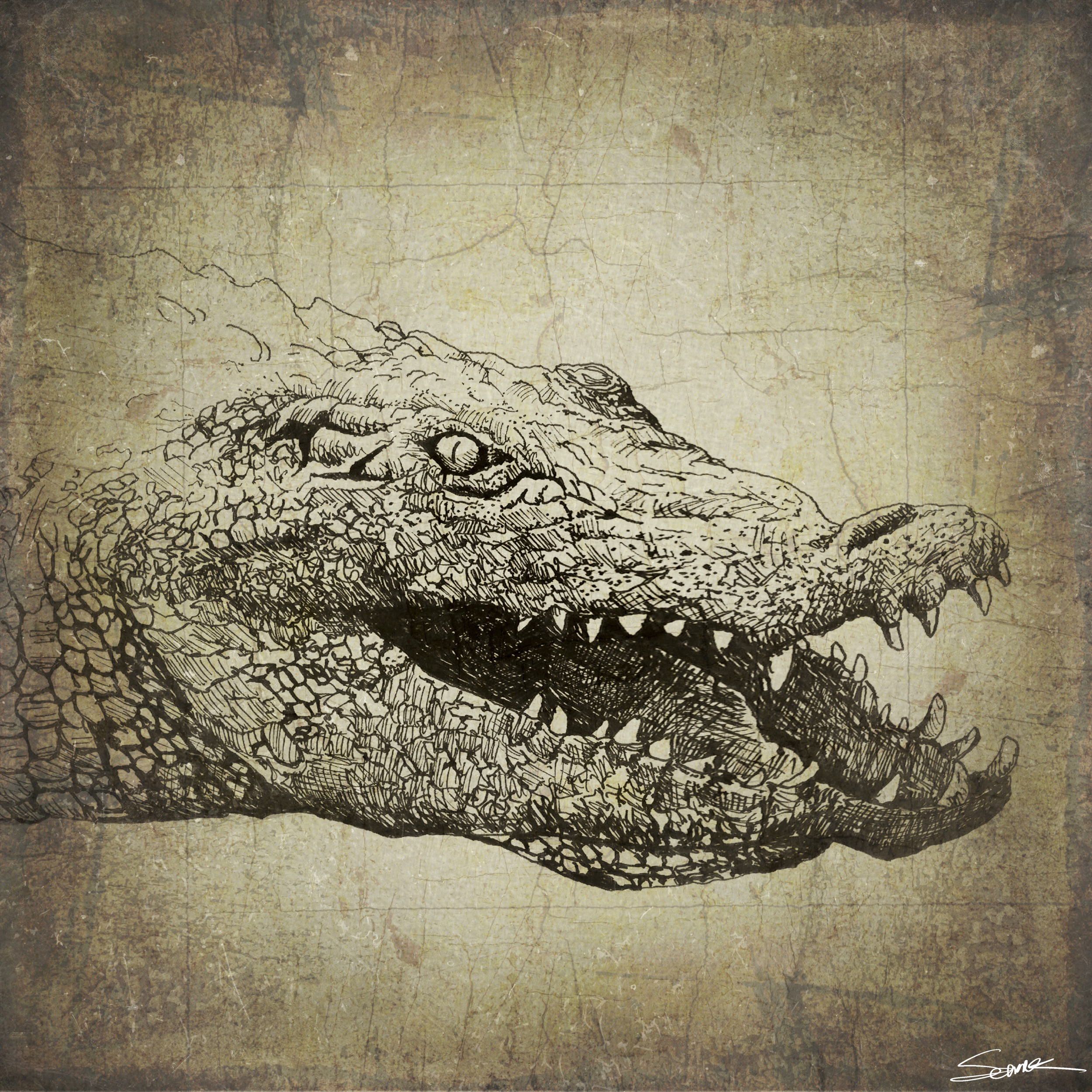 Catch Ya Later Alligator