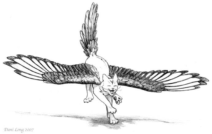 cat wings! :D