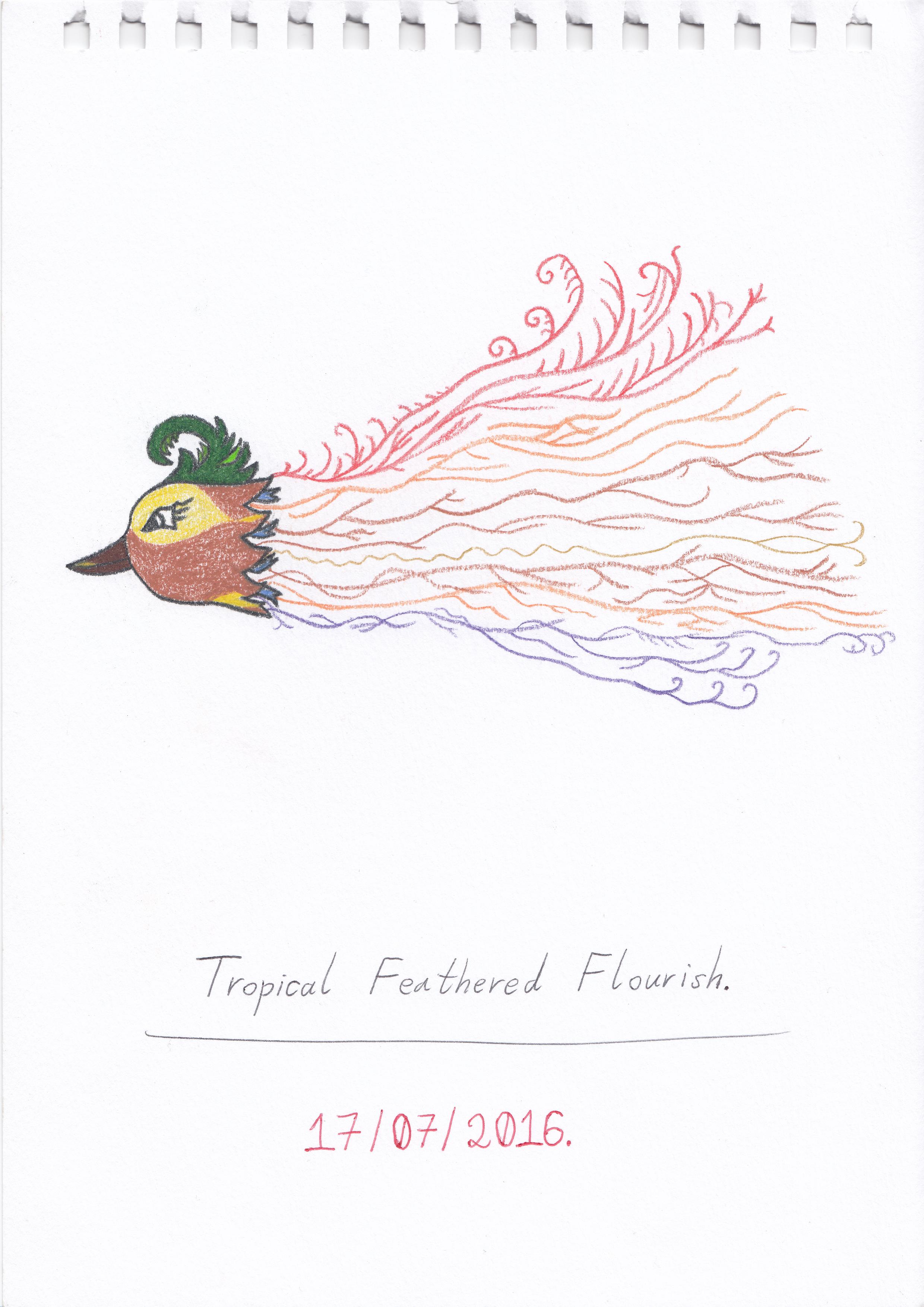 Tropical Feathered Flourish. (17/07/2016)