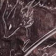 Fox in the shadows