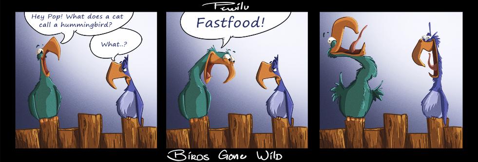 Birds Gone Wild Sketch 1