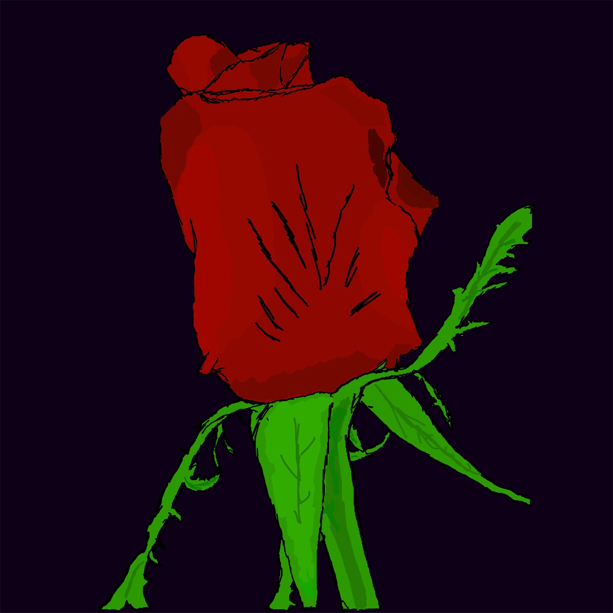 Krista's Rose