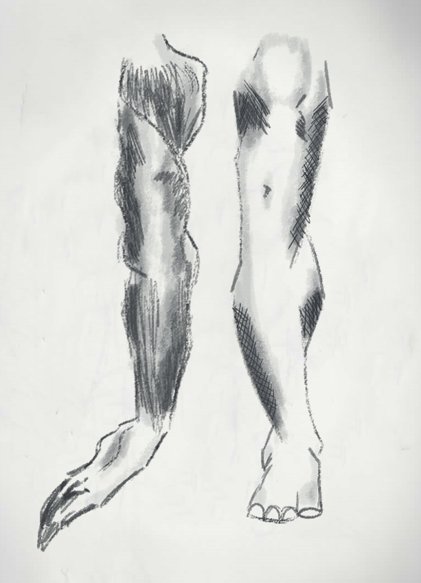 Leg and Arm sketch