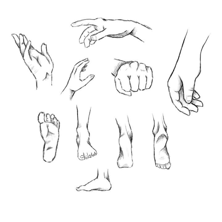 Hand & Foot Digital Study