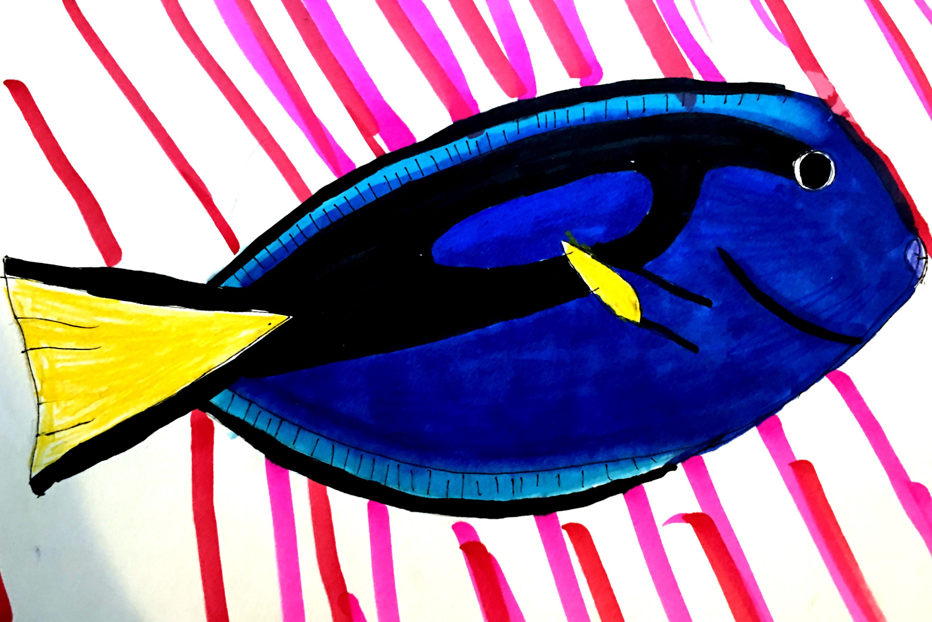 Blue Tang (Dory)