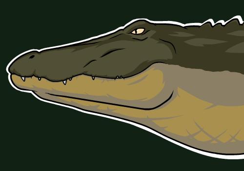 gator boyz