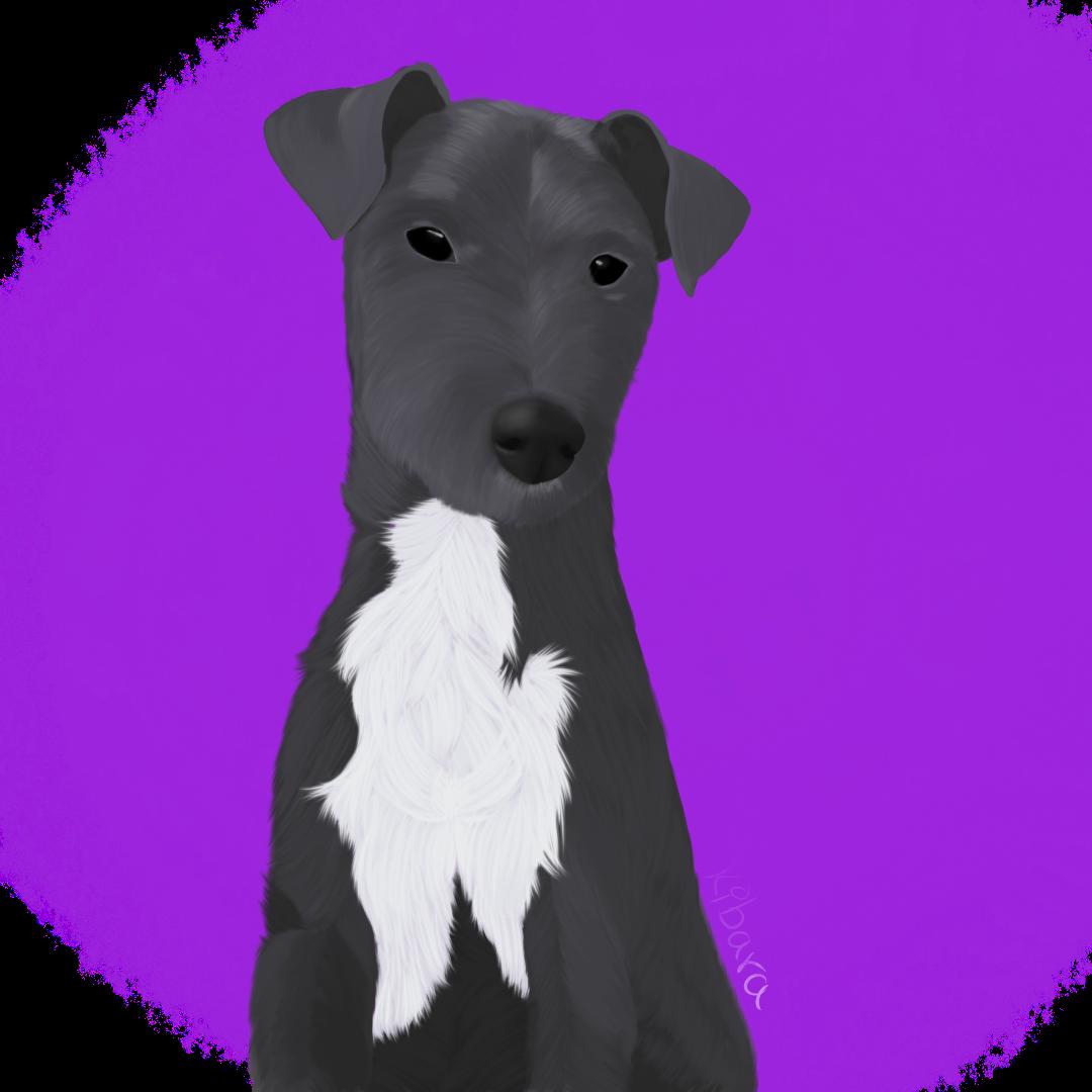 Pet portrait #3
