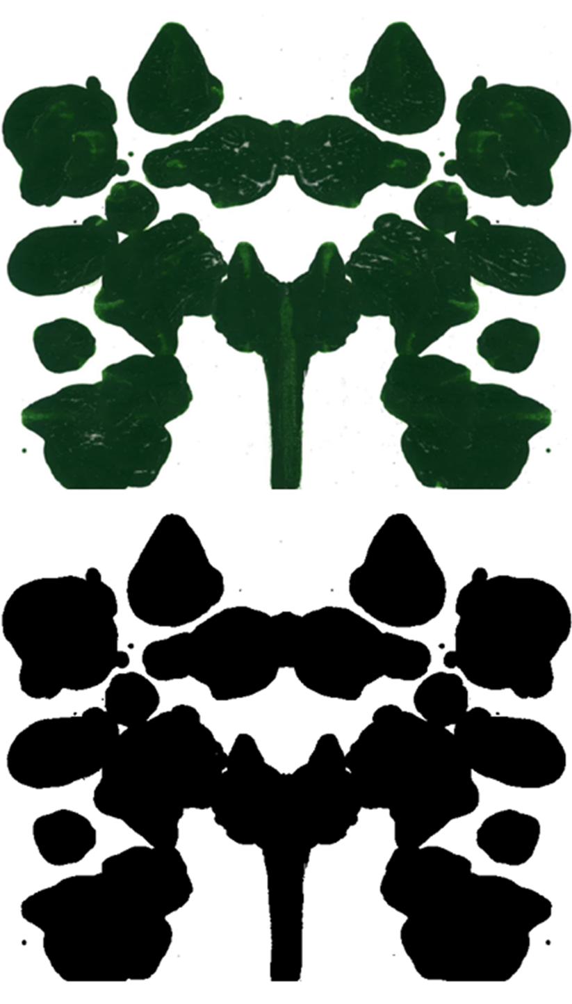Rorschach inkblot test 09