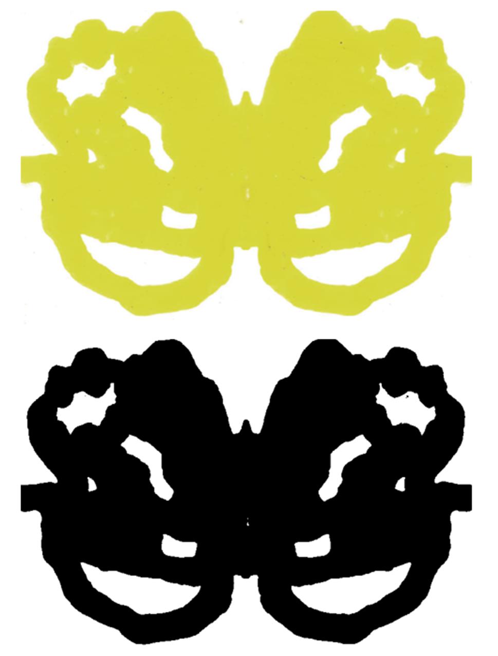 Rorschach inkblot test 16