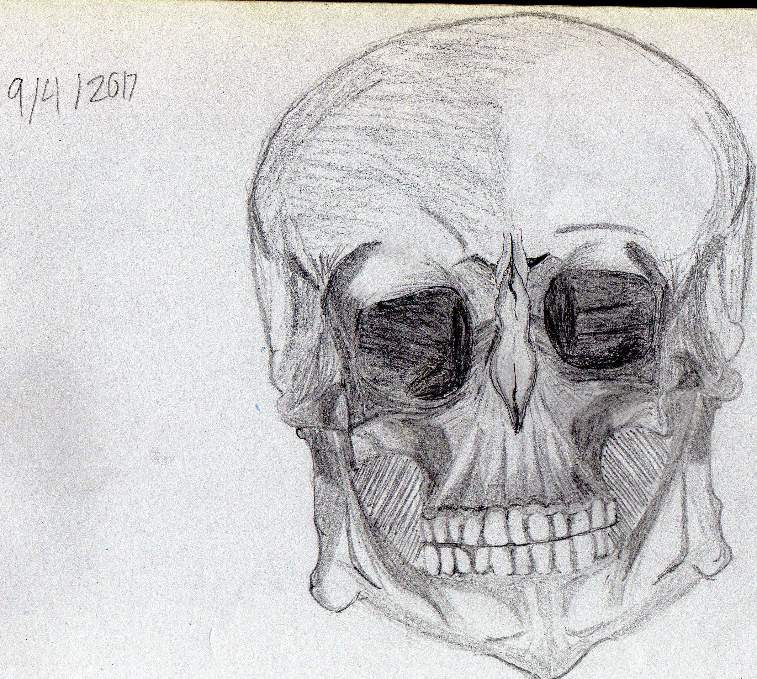 Cool looking Skull guy.