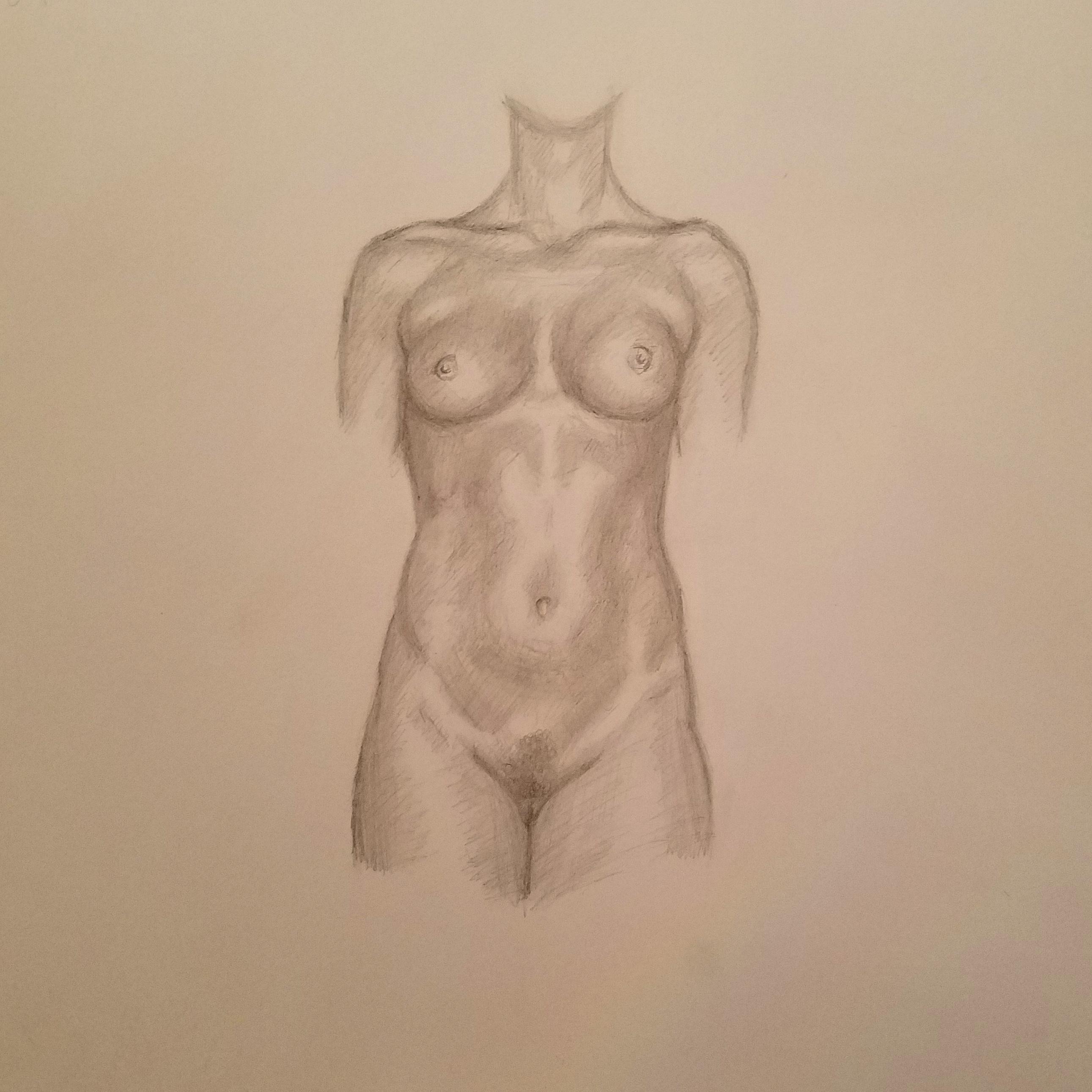 Female Anatomy Practise
