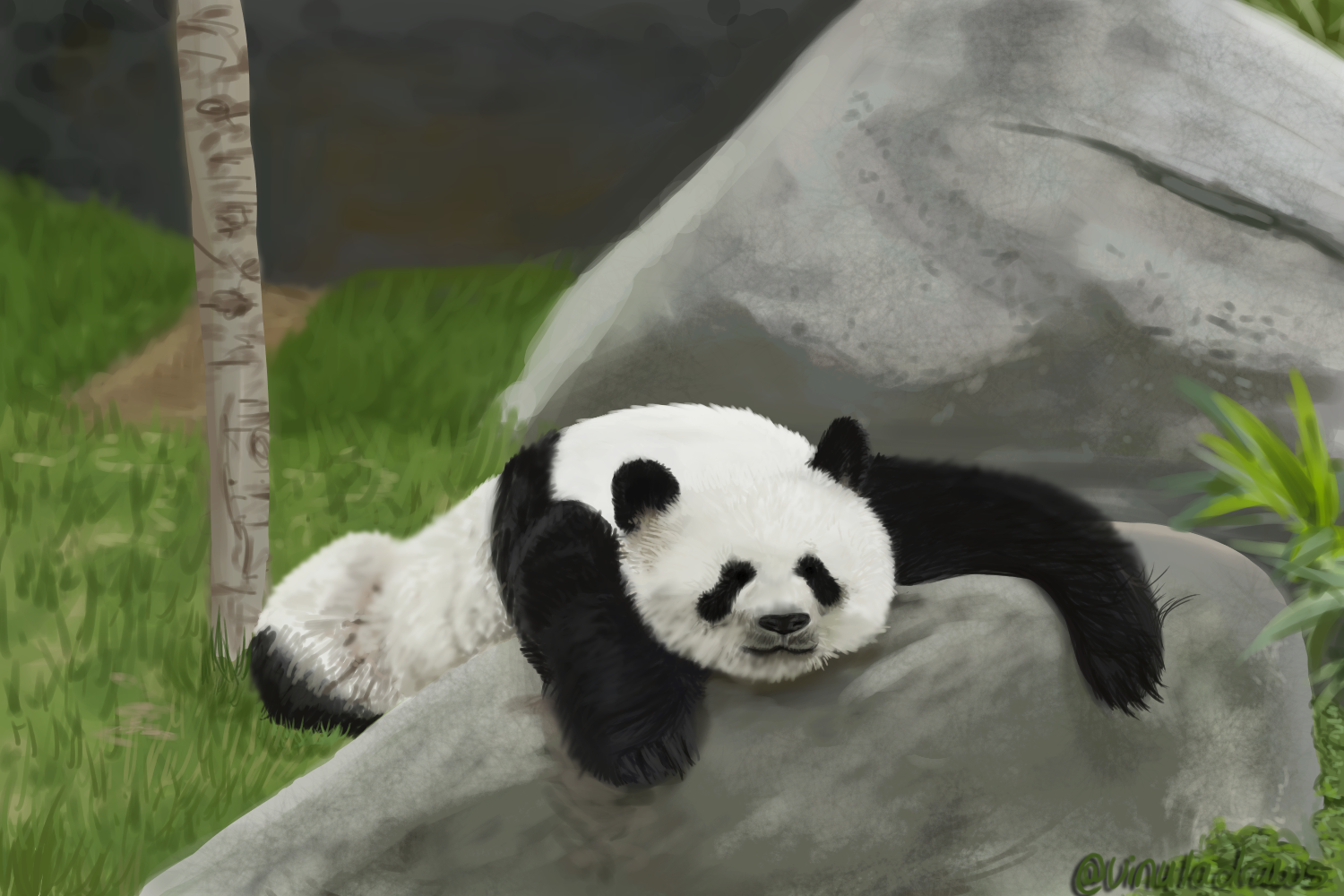 Cute Panda By VinulaDraws On Newgrounds