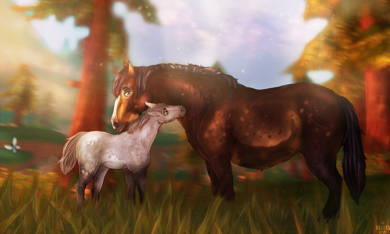Connemara horses