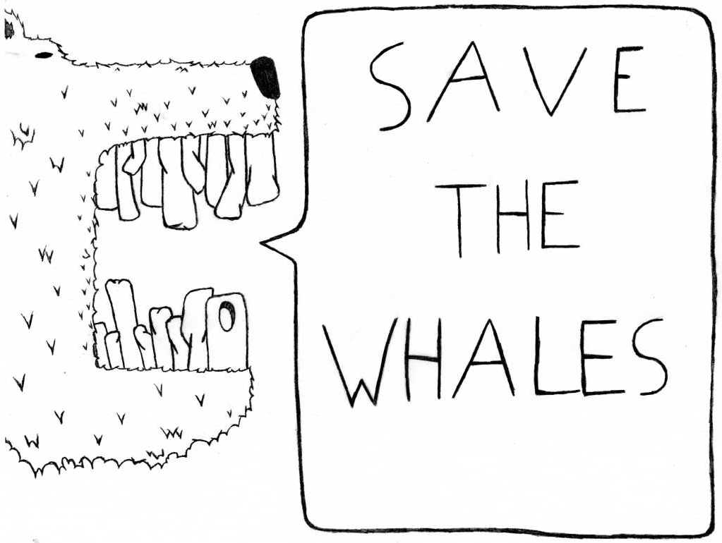 """""""Save The Whales"""" say muh Bear"""