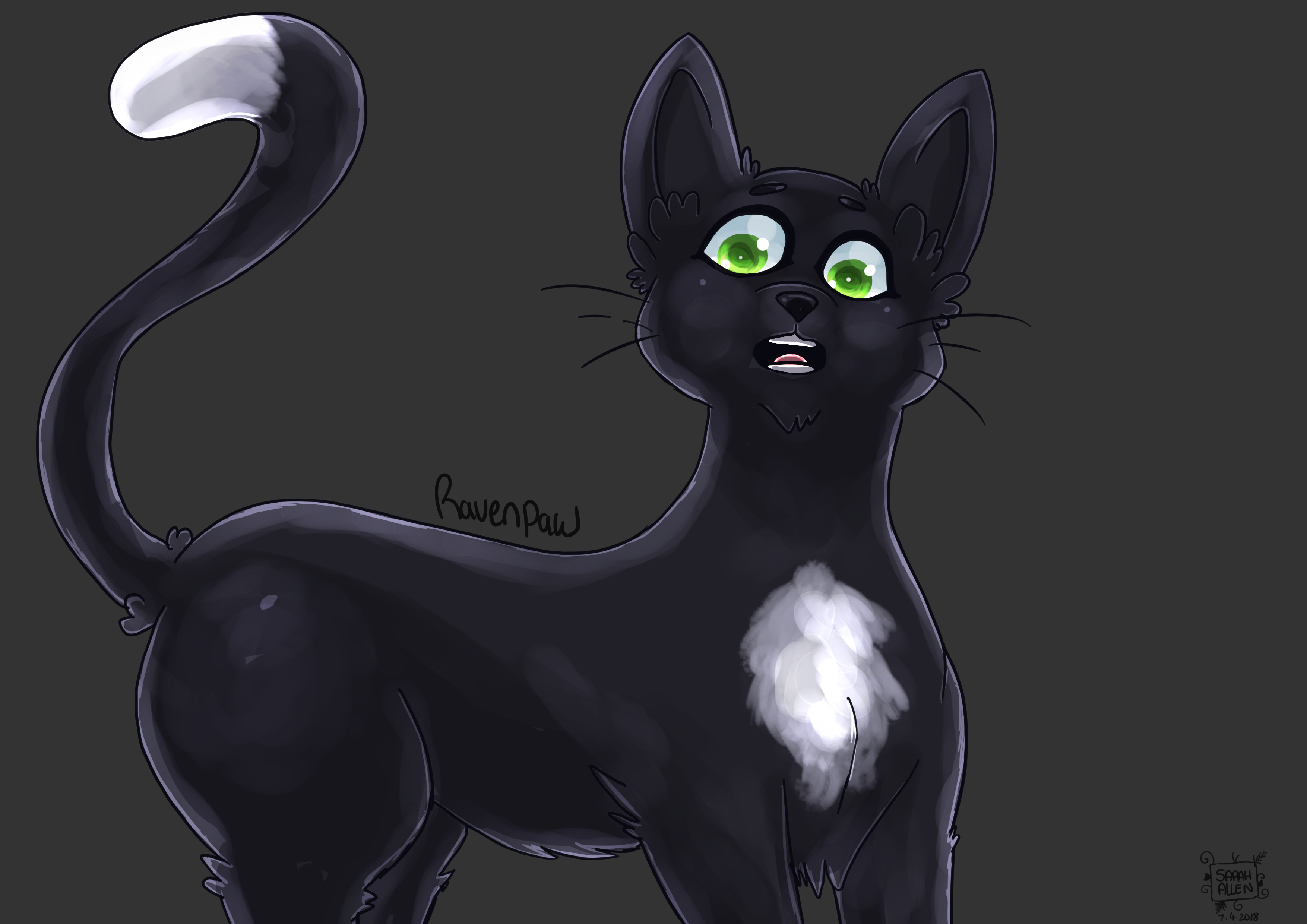 Warrior Cats Ravenpaw Coloring Pages