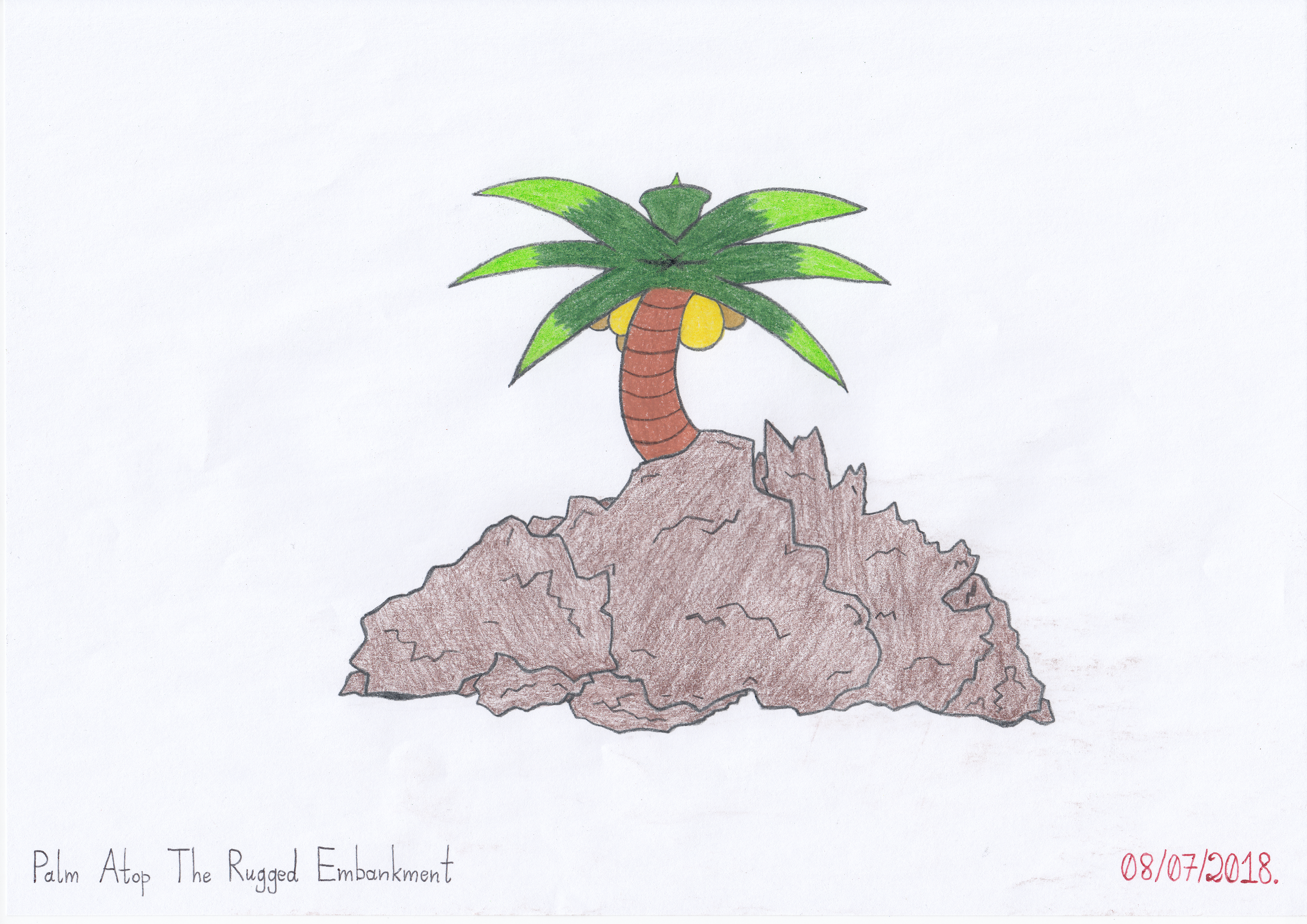 Palm Atop The Rugged Embankment