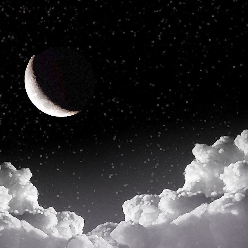 """""""Moon"""""""