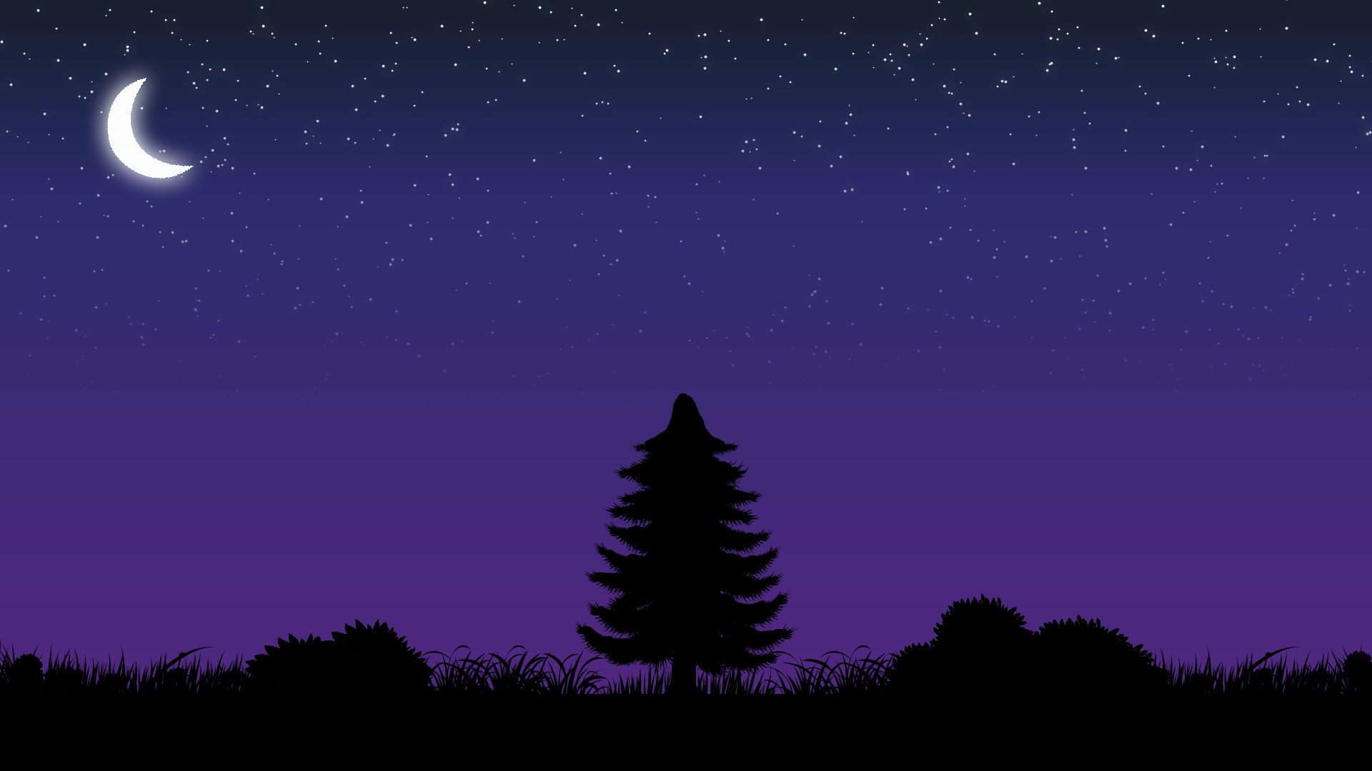 Silhouette Night Skies