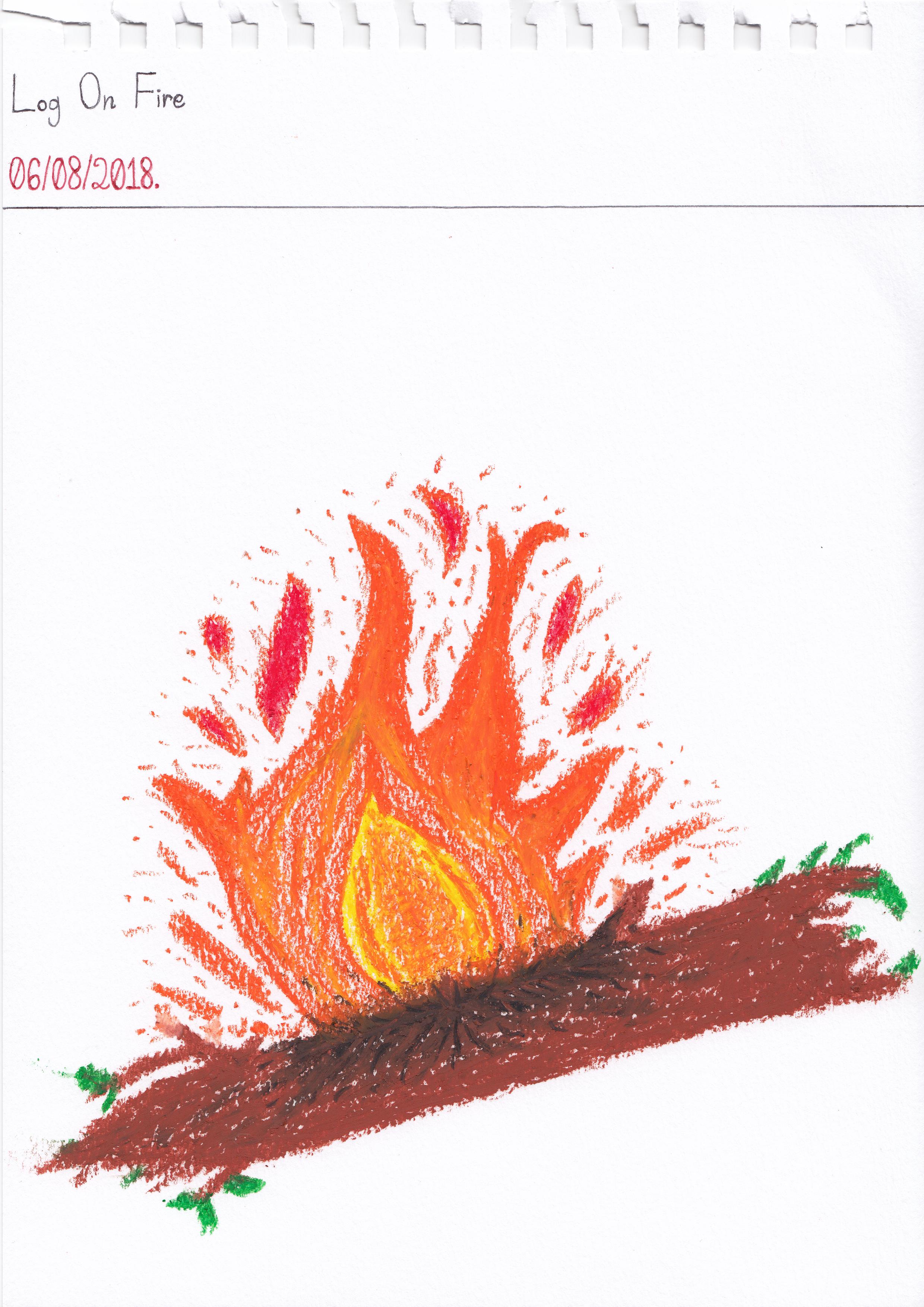 Art #80 -- Log On Fire