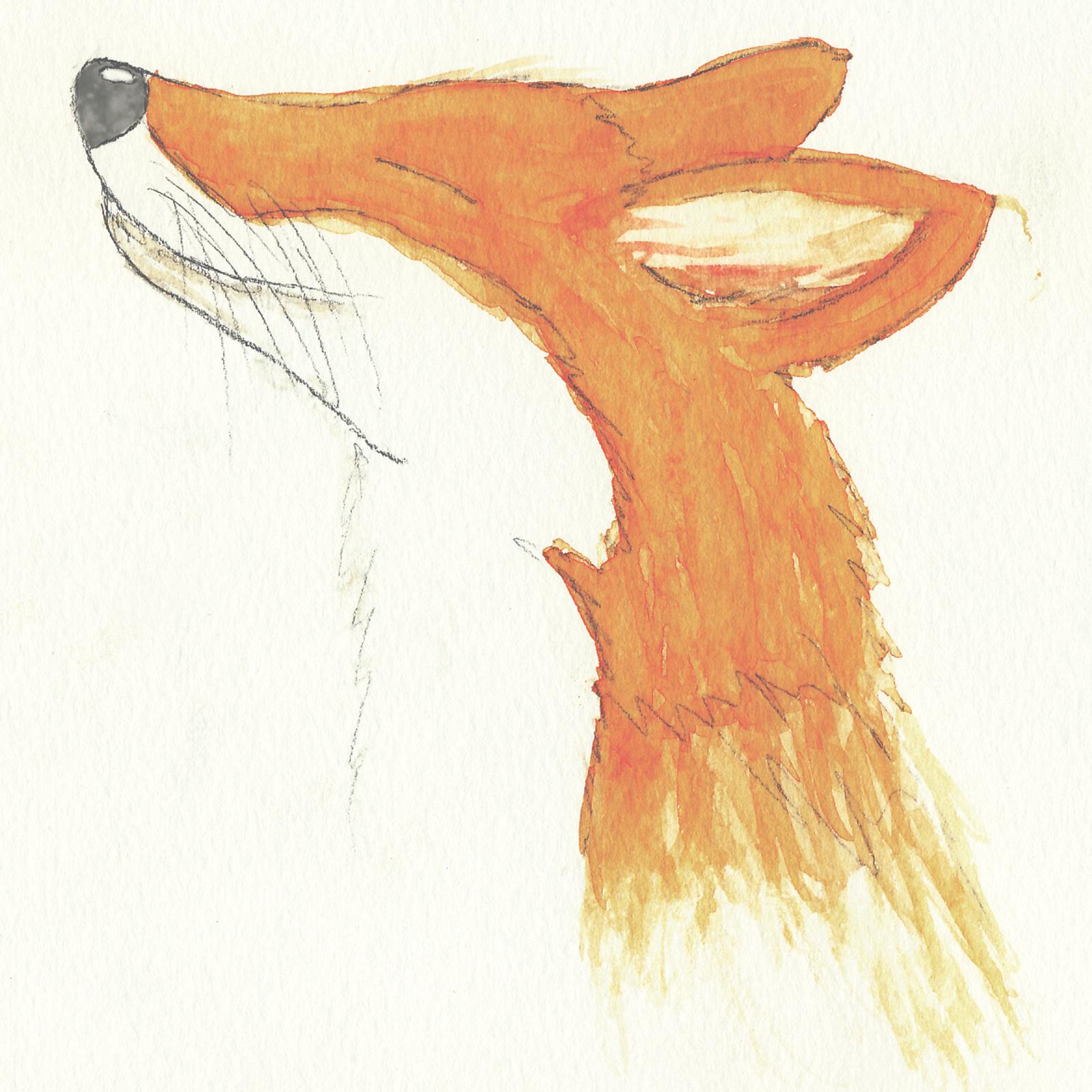 """""""Fox"""" watercolor"""