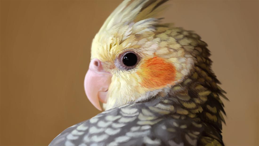 realistic bird