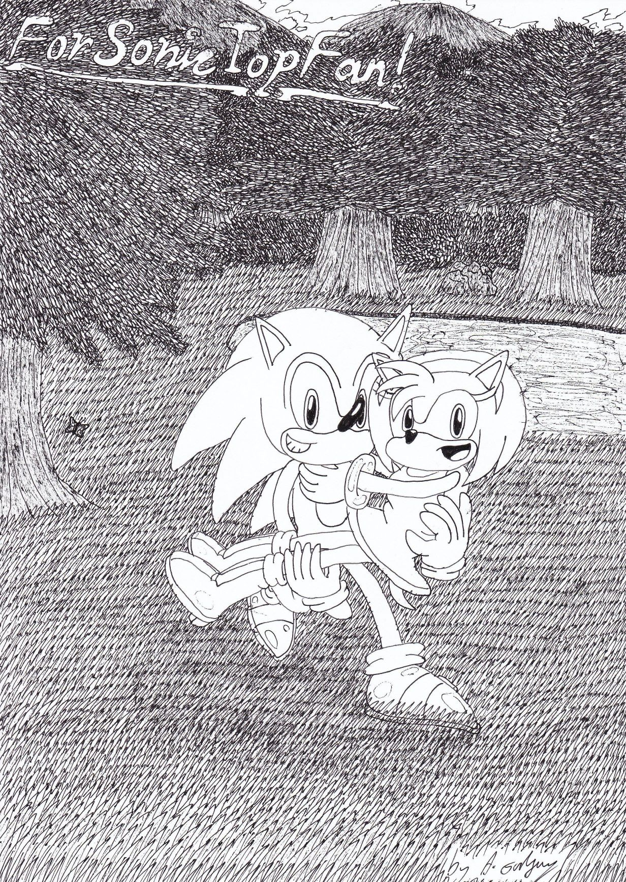 Don't give up SonicTopFan!