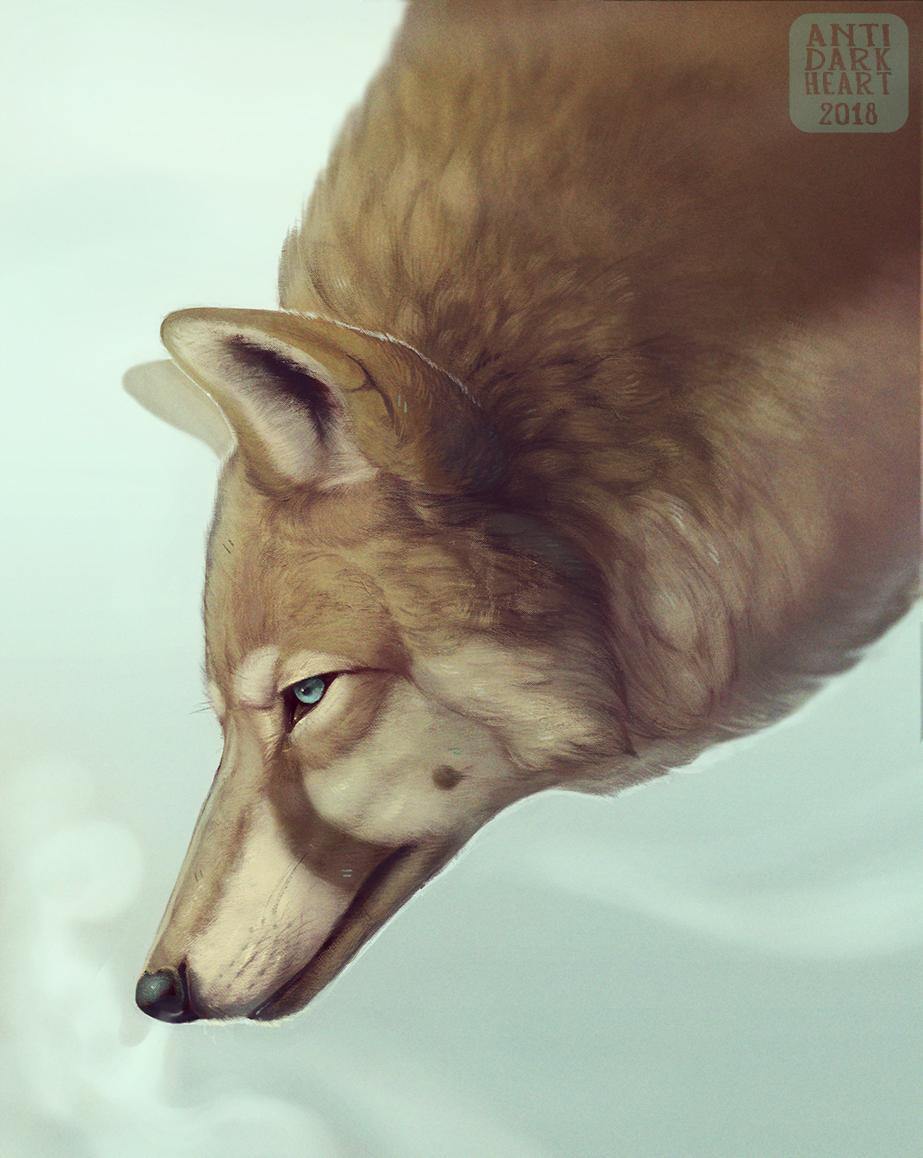 Mist - Commission
