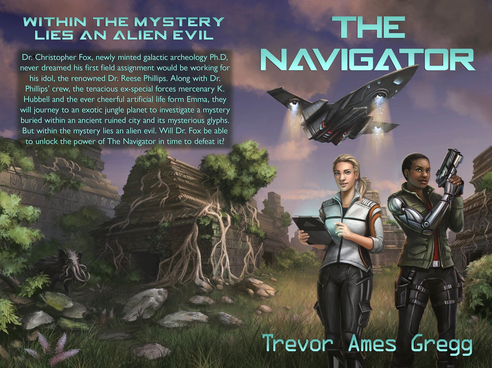 Commission - THE NAVIGATOR Book Cover